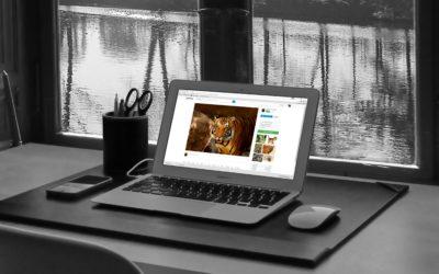 Il 2019 è l'Anno della Velocità della Pagina web. Sei Pronto?